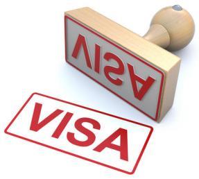 Travel Visa Stamp