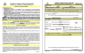 image regarding Ds 3053 Printable Form known as DS-3053 Assertion of Consent for Minors Pport