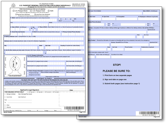 DS82 Application For Passport Renewal By Mail – Passport Renewal Application Form