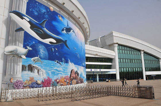 Beijing Aquarium.