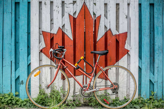 Canadian maple leaf painted on fence