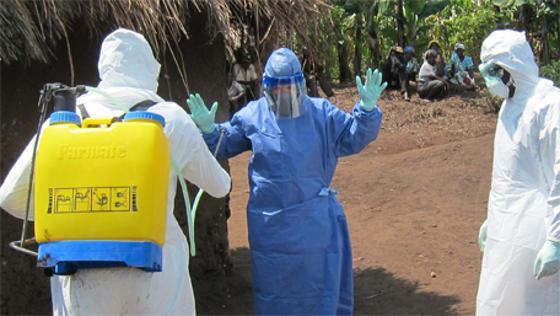 Ebola virus in West Africa