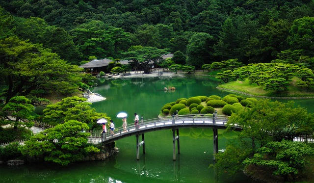 Beautiful garden in Japan with pond and lush green foliage.