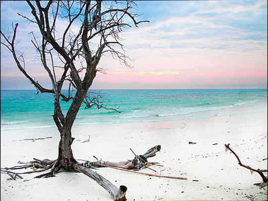 Kalapathar Beach at Havelock Island, Andaman & Nicobar Island, India